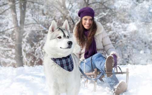 Красивые зимние фото девушек