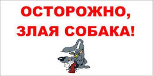 Прикольные таблички: осторожно злая собака