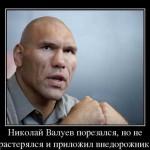 Валуев — демотиваторы