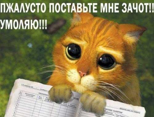 работа для студентов москва не полный рабочий день