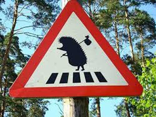 Прикольные дорожные знаки - фото