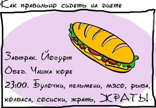 Картинки по запросу Смешные картинки про диету с надписями