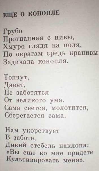 Смешные короткие стихотворения