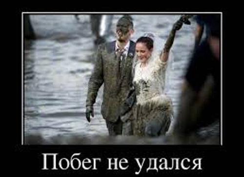Смешные приколы на свадьбе - видео