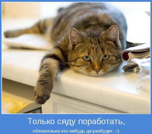 прикольные надписи на холодильник прикольные