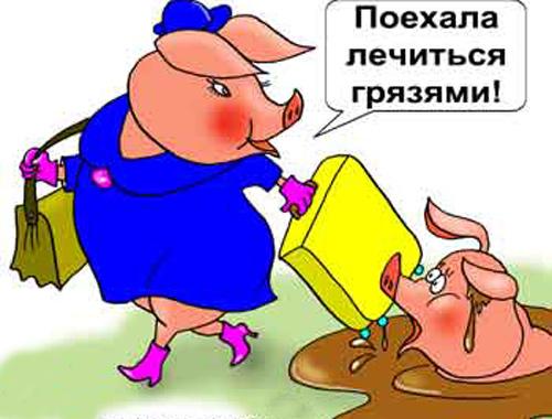 Свиньи - карикатуры
