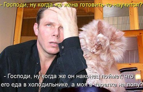 Приколы про животных и людей