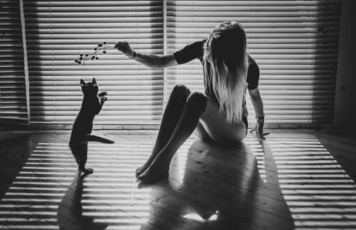Фото девушек с кошками