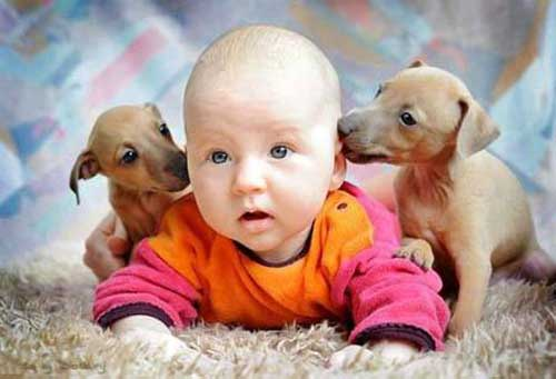 картинки младенцев прикольные