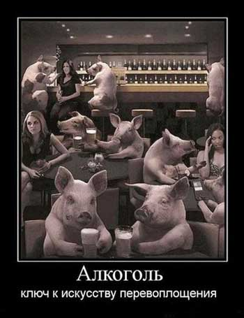 Смешные демотиваторы про алкоголь